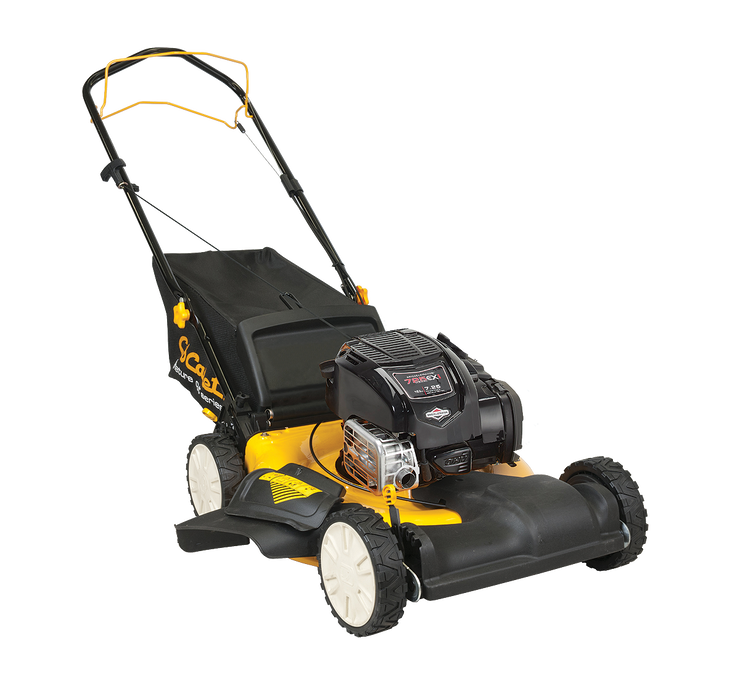 "21"" 163cc FWD Self-Propelled Mower"