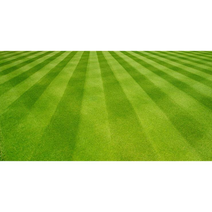 Lawn Striping Kit for 46-inch Decks